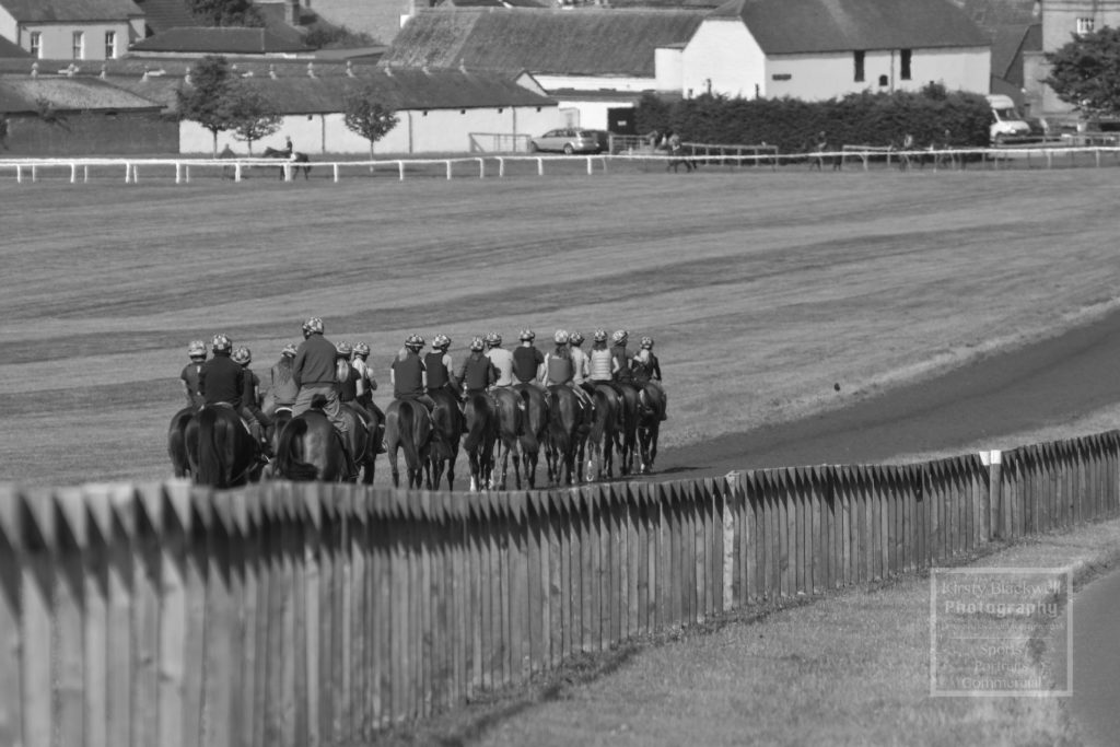Newmarket Gallops (25 of 33)