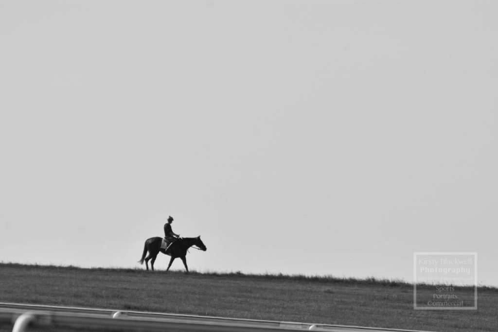 Newmarket Gallops (26 of 33)