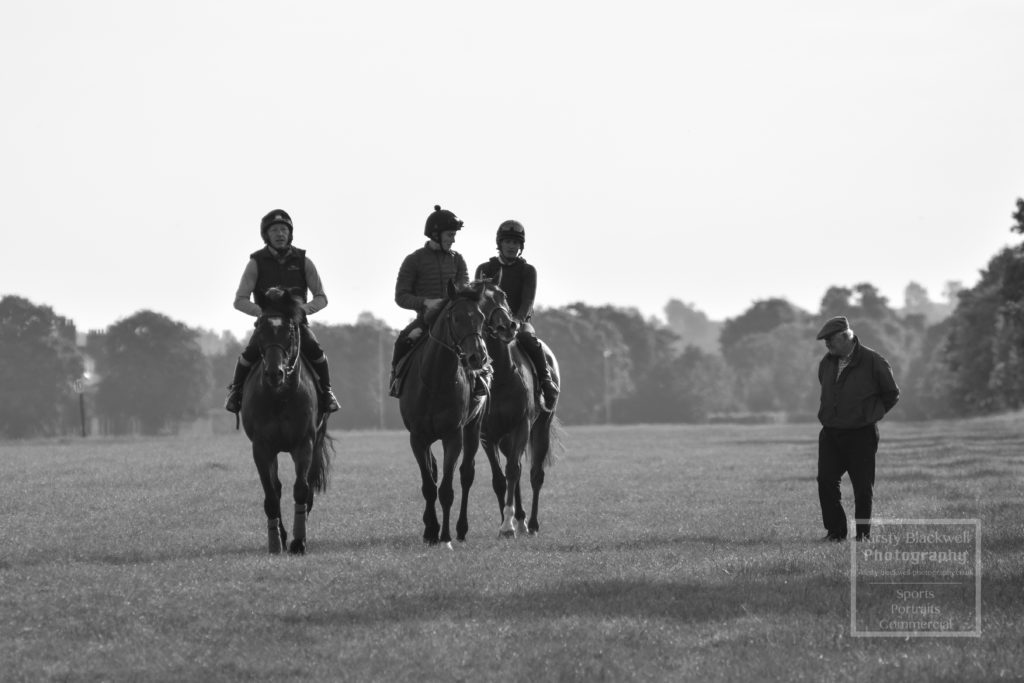 Newmarket Gallops (5 of 33)