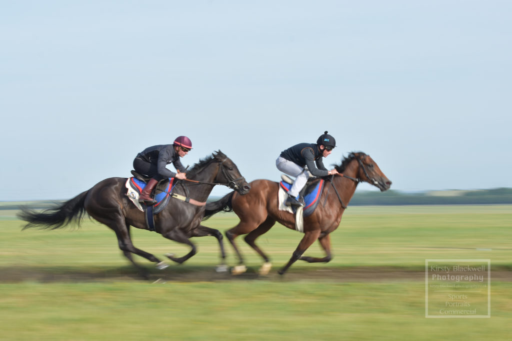 Newmarket Gallops (9 of 33)