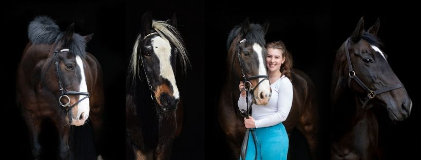 Kirsty Blackwell Cambridge Equine Photographer